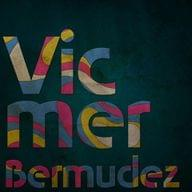 Freelancer Vicmer B.