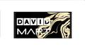 Freelancer David A. V. M.