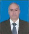 Freelancer Fernando P. A.