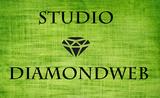 Freelancer Studio D.