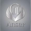 Freelancer Anser T.