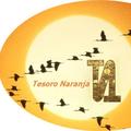 Freelancer Tesoro N.
