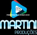Freelancer MARTINI P. A.