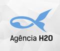 Freelancer Agência D. H.
