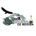Freelancer Sierra N. D. M.