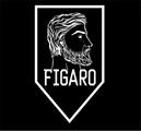 Freelancer Figaro