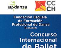 Pendon para Concurso de Ballet 2014, EFP Danza, Caracas