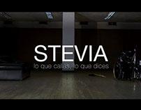 Videoclip para agrupación de Rock STEVIA