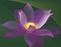 Blend Tool - Flower