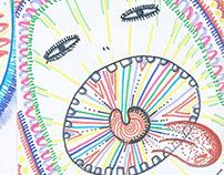 Ilustración - Cuaderno - II