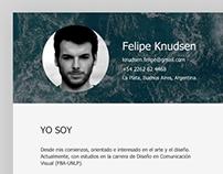 Curriculum Vitae - Felipe Knudsen Profile