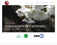 Centinela - Diseño Web Responsive Wordpress