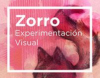ZORROS / climas visuales