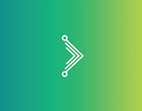 Spinne // Branding