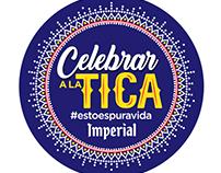 Fiesta TICA
