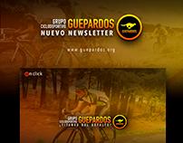 Newsletter Guepardos