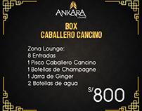 ANKARA LOUNGE - Banners para Boxes (propuestas)