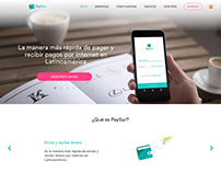 PaySur - web new design