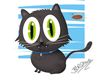 the black cat fat!