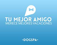 Tu mejor amigo merece mejores vacaciones (DogSpa)