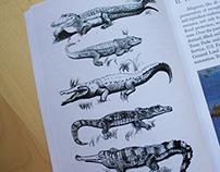 Alligators book