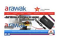 Diseño Web para Arawak