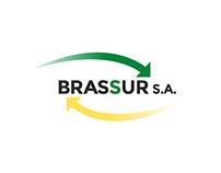 Brassur S.A. // Website Redesign