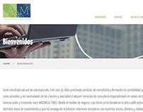 A & M Consultores