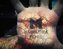 Demo Reel 2014 + Illuminated Skin