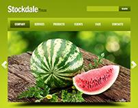 Diseño Web StockDale, Comunidad en Texas