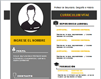 DESIGNS CURRICULUM VITAE MADE IN MICROSOFT WORD