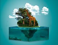 Extinction of giraffes
