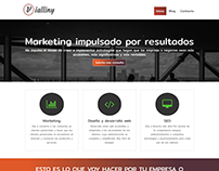 Vialliny Marketing Webpage