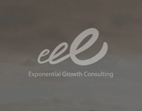 Exponential Growth Consulting - Diseño Web