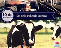 Diseño de contenido web para fb:INTA Argentina