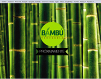 BAMBU VENEZUELA SHOWCASE WEB