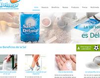 Desarrollo de sitio web - Sal Marina - Wordpress