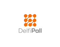 Branding   DelfiPall