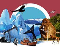 Patagonia.net