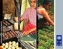 PNUD, Proyecto Historia de Éxito, Diseño de Afiches