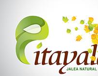 Logotipo, Identidad Pitayalax