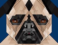 Síntesis Gráfica - Perro: raza Pug /Carlino