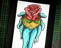 Rosetopus