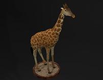Modelagem 3D | Girafa Low Poly