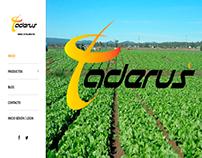 Pagina web Taderus