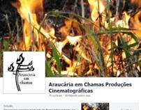 Araucária is Burning