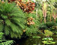Healthy Jungle (Concepto y Naming )
