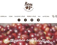 Website - http://pacaecafe.com