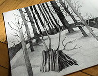 Ilustration - graphite