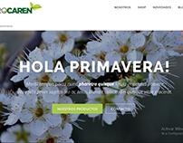 Desarrollo de Sitio Web en Wordpress + E-commerce